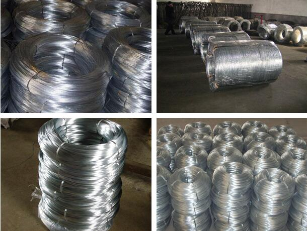 Galvanized Iron Wire1